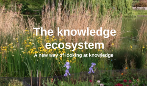 knowledge ecosystem